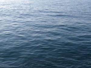 海面は穏やか