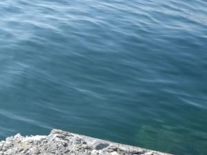 まったりな水面